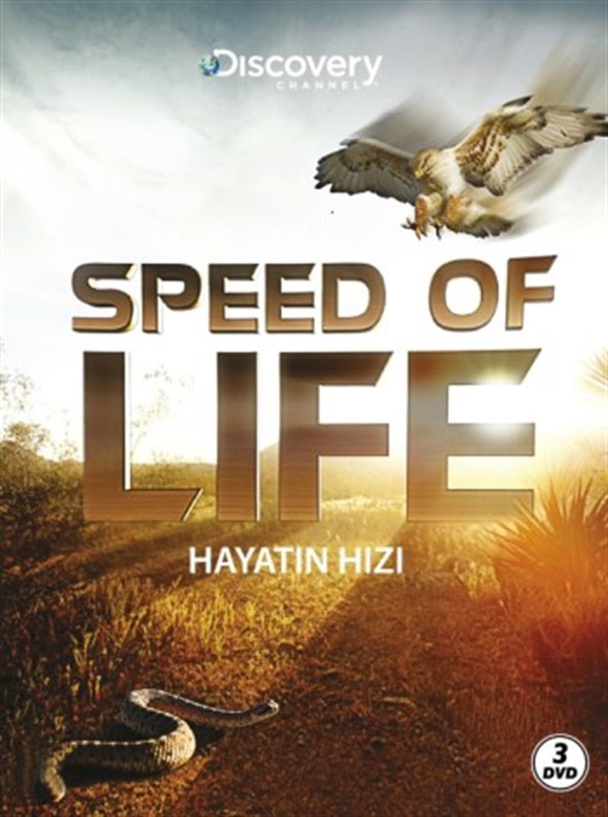 HAYATIN HIZI